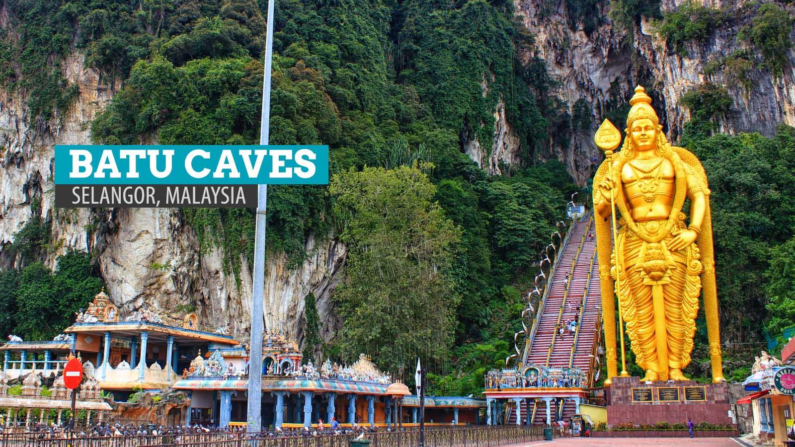 quảng ngãi - Selangor-Malaysia